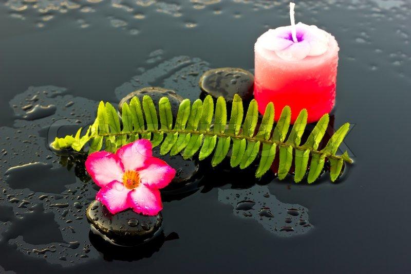 Supplier Spa di Bali
