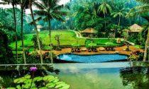 Lowongan Spa Manager Wanita Plataran Ubud Hotel