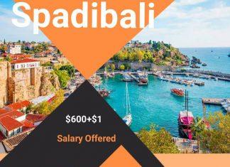Lowongan / Job Vacancy Hotel Bintang 5 di Turkey - Antalya
